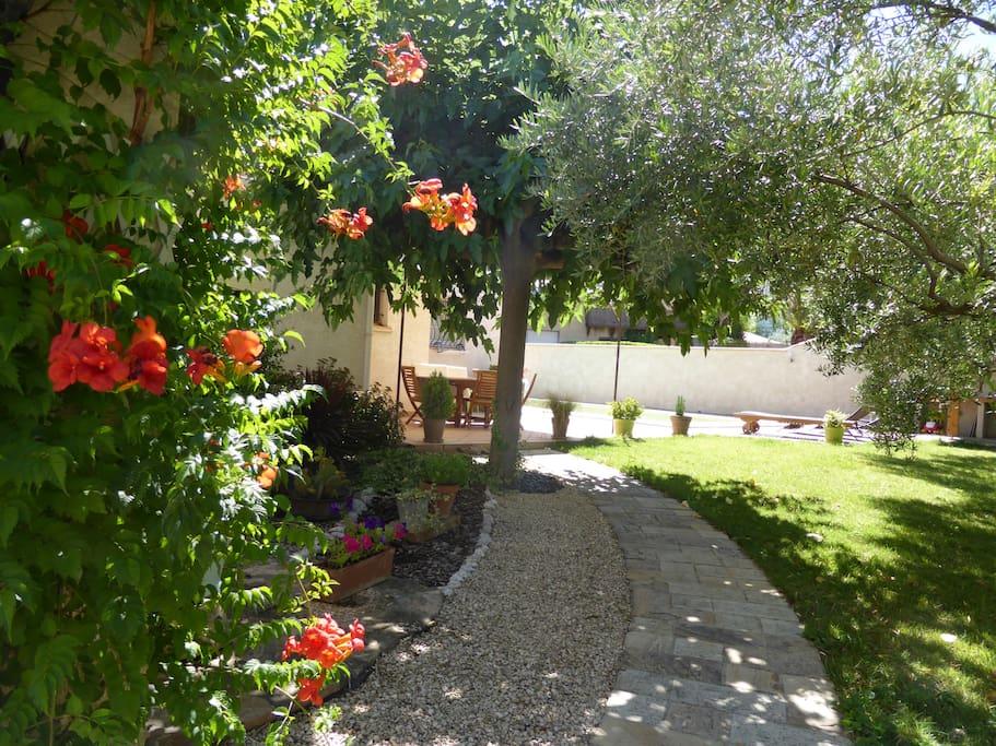 un jardin verdoyant et fleuri