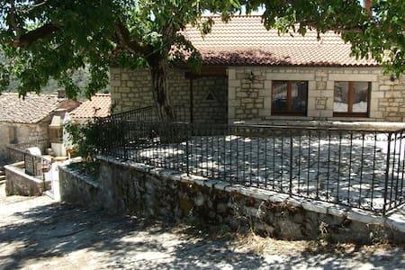 Δημητσανα-Πετρινη μεζονετα 150 τ.μ - χωριο Ζατουνα