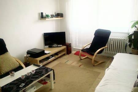 Byt 1+1 s balkonem - Valašské Meziříčí - Apartament