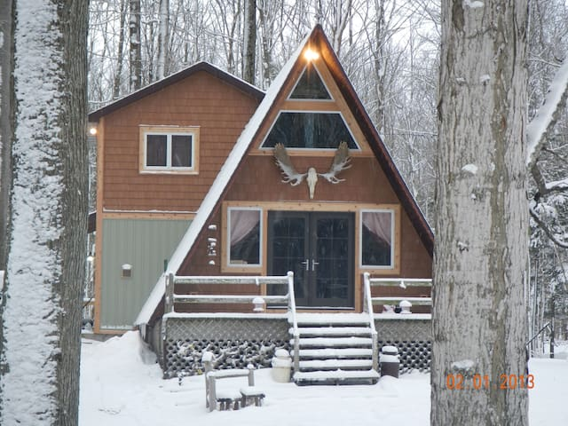 Outdoorsy AFrame Set Back On Acreage - Hamlin Lake - Ludington - Ev