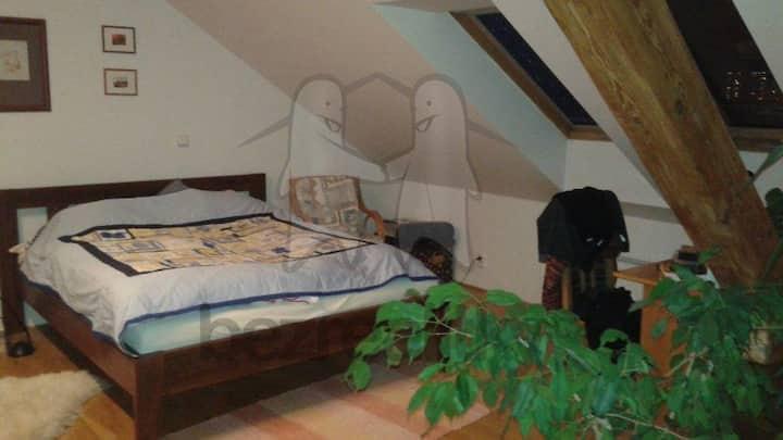 Mezonetový podkrovní byt v Nuslích