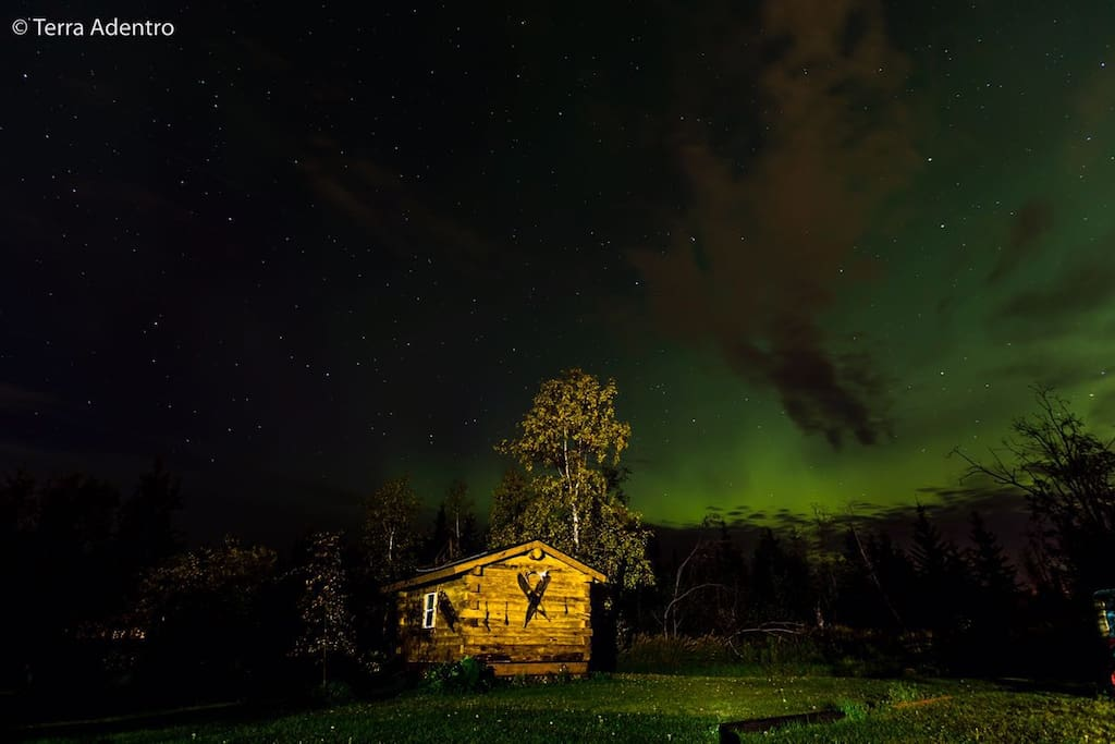 Aurora in the fall - taken by a guest (Terra Adentro) in September 2017.