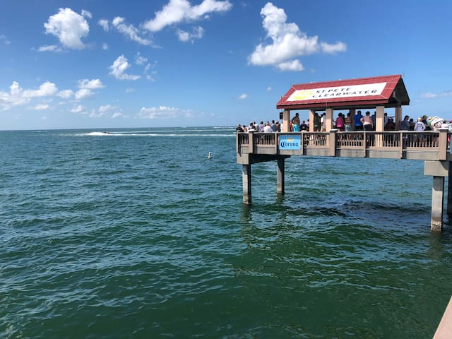Minutes from Clearwater Beach