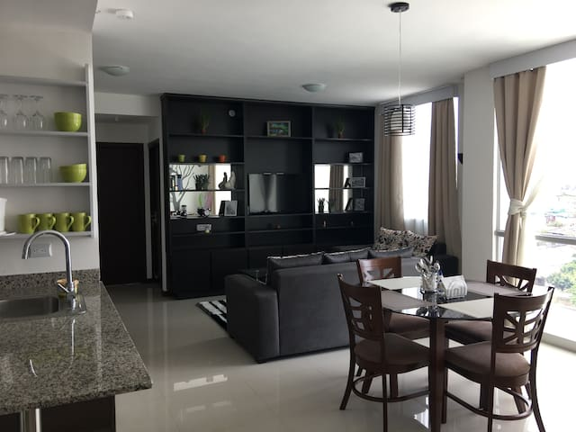 FULLY EQUIPPED APARTMENT DELUXE in San Jose - San José