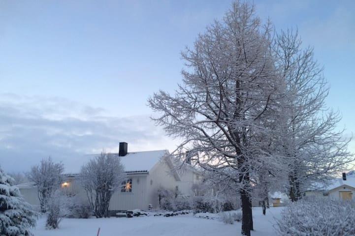 Gravdal, Vestvågøy, Lofoten - Anneks - Gravdal - Wohnung