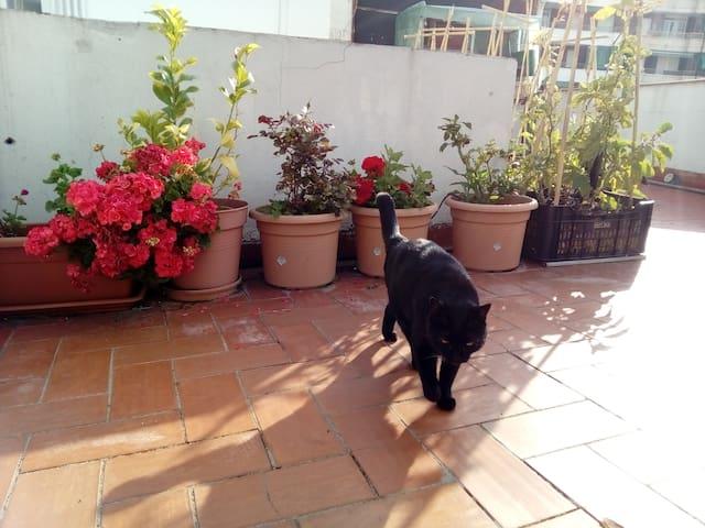 Sunny apartment with big terrace, Barcelona - L'Hospitalet de Llobregat - Apartamento