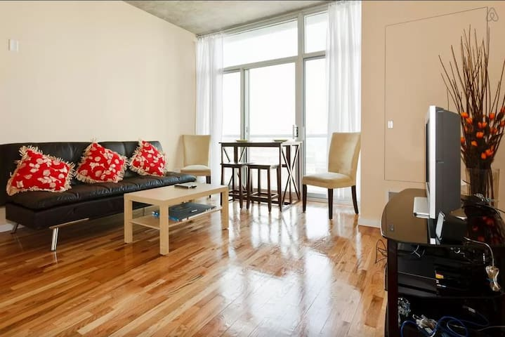 South Loop/McCormick Entire Apt 1br