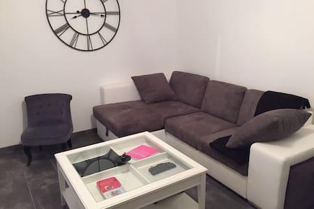 Bel appartement calme et chaleureux - Colmar