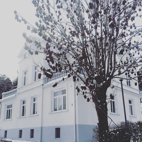 Vindslägenhet med kakelugn i vackert 1800-tals hus - Södertälje - Appartement