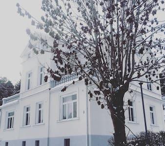 Vindslägenhet med kakelugn i vackert 1800-tals hus - Södertälje - Wohnung