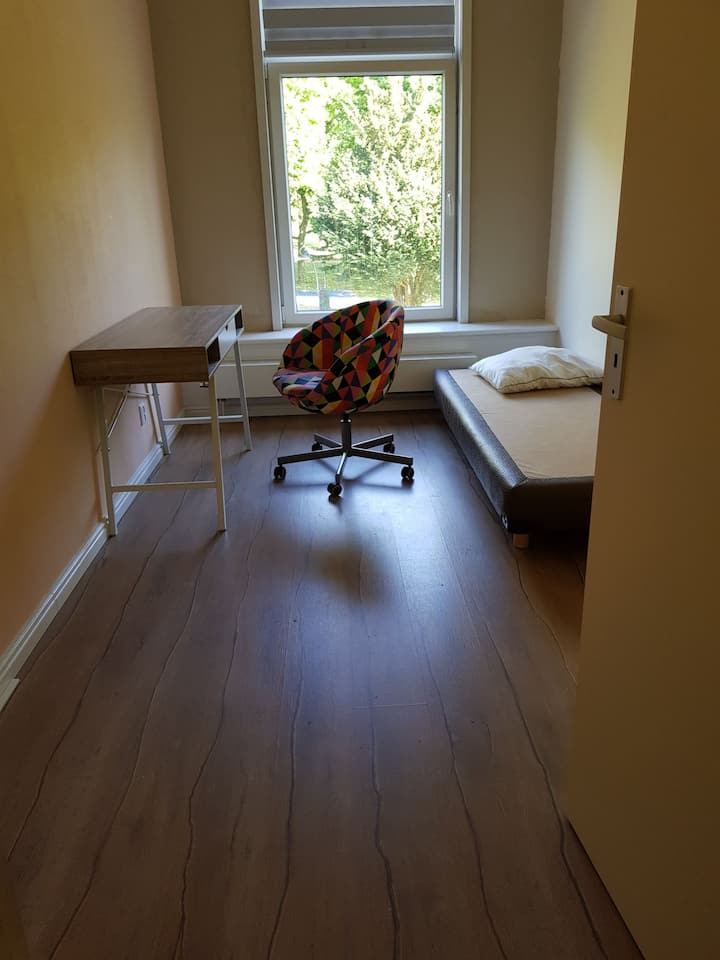 Beautiful Furnished Room in Apartment near Park