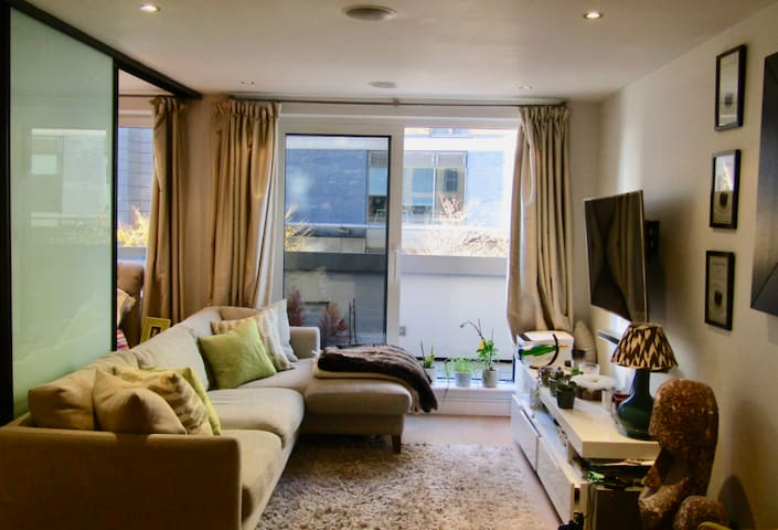 Cosy Apartment in Central London by the River
