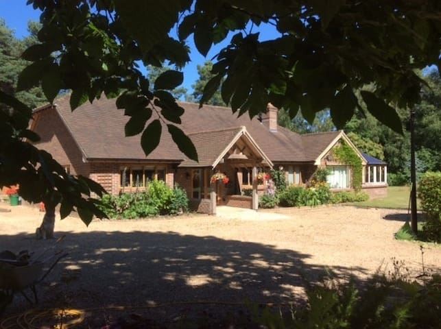 Private, ensuite room in New Forest - Fordingbridge, - Bungalow