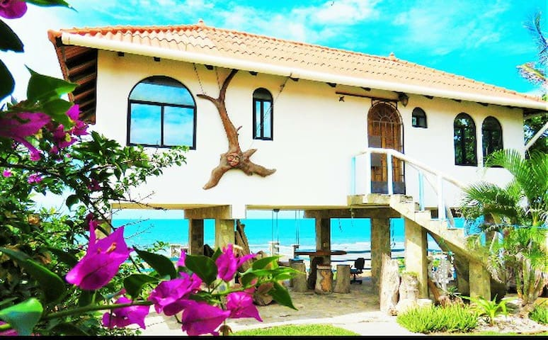 Beautiful beachfront guesthouse playa Uverito