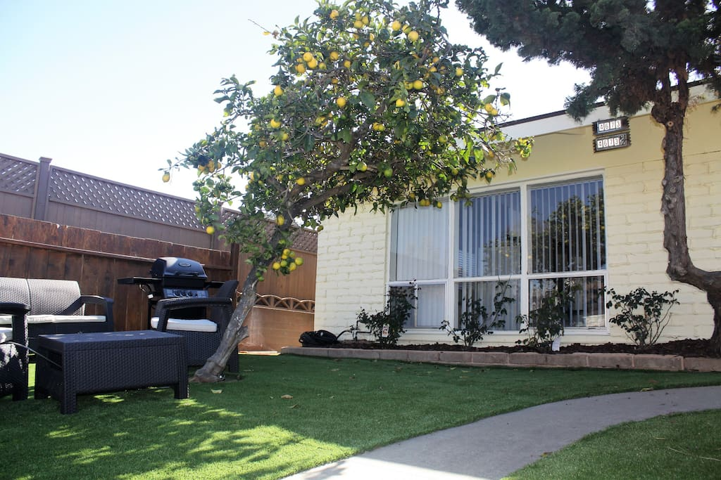 Front of the property with a large front yard, seating and a BBQ for you to enjoy.