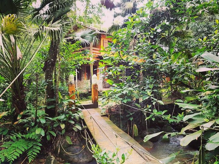 Casa da Floresta - Suíte Anexo IV