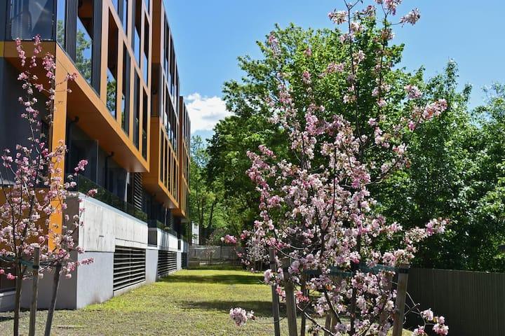 VH Apartments Telliskivi