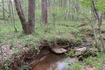 A stream in the woods. Just ask and we can point you in the right direction!