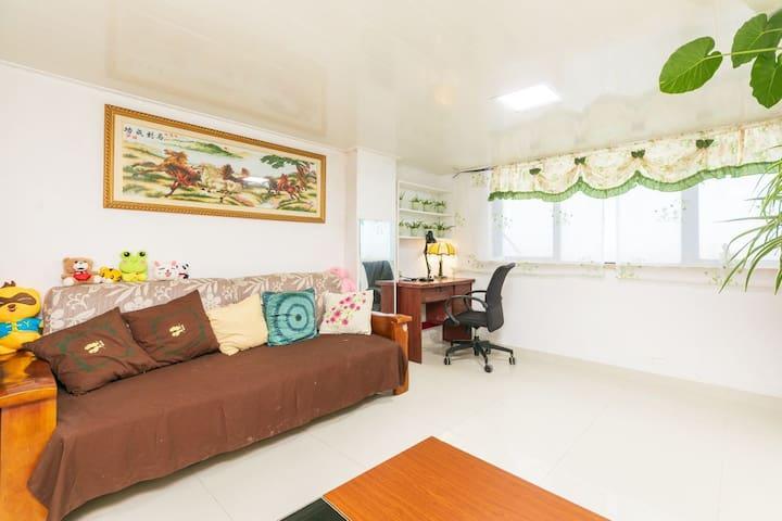 野生动物园地铁站附近公寓整租两室一厅一厨一卫