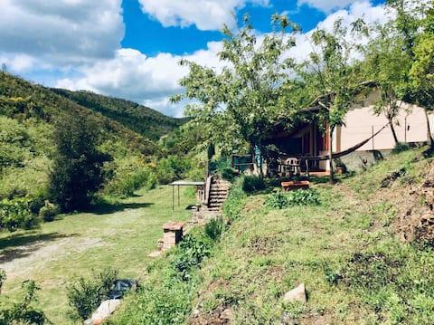 Lao-tzu house