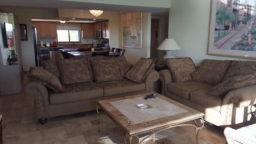 2 Large Comfy Sofa's