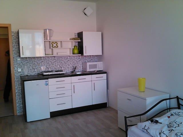 Mickys Place - Třeboň - Apartment