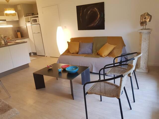 Bel appartement raffiné esprit contemporain