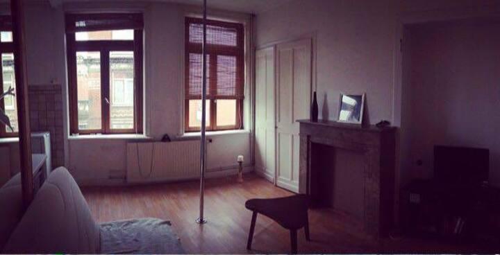 Logement entier, type T2 quartier Wazemmes à Lille