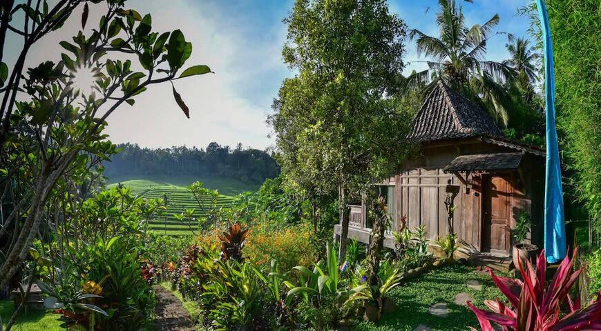 Duck Cottage @ Bali Lush