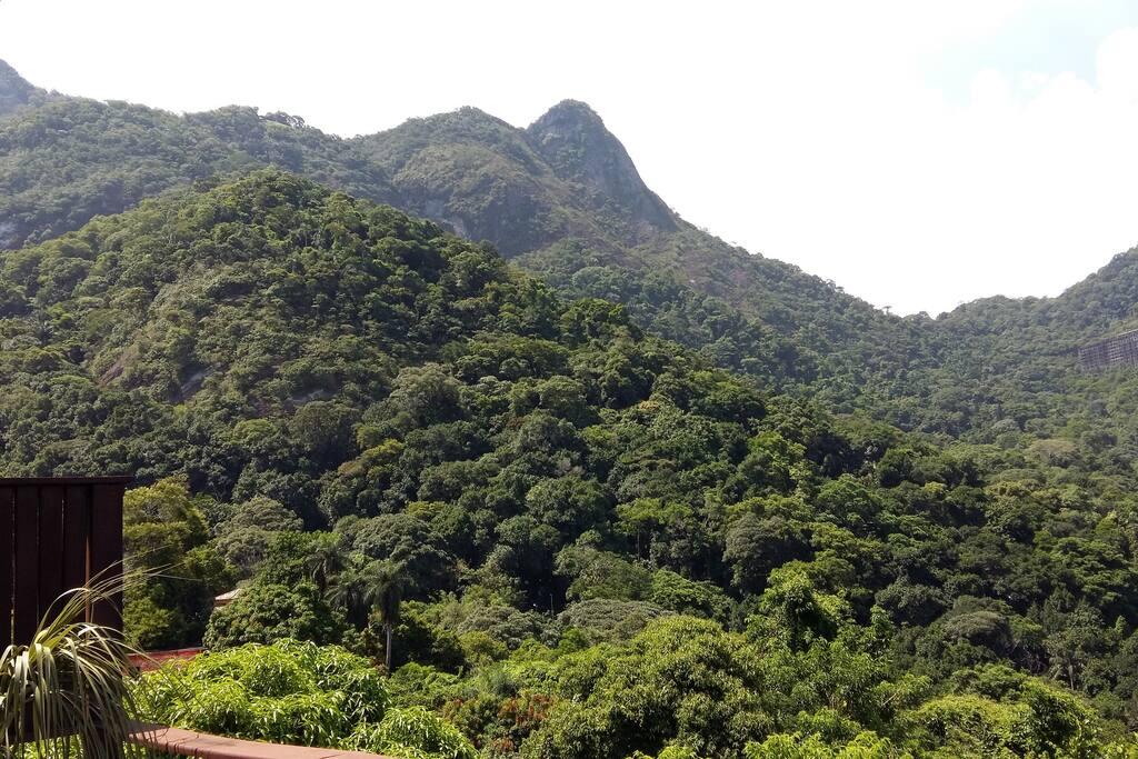 Vista para a Rampa de Voo Livre e para a Floresta da Tijuca.