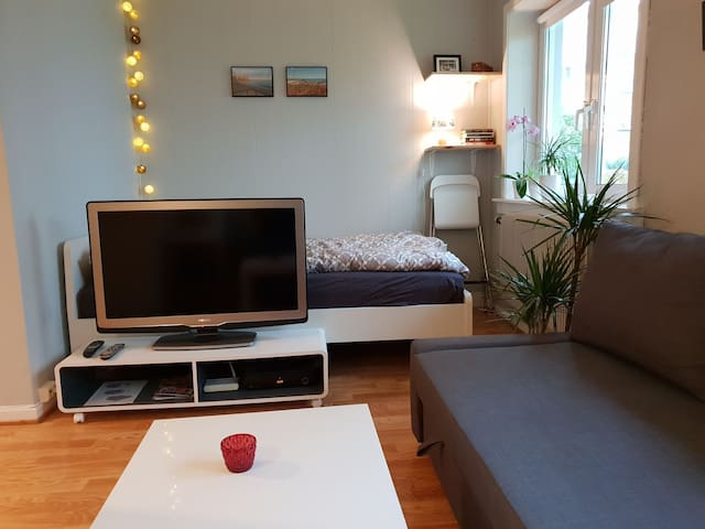 Nice and cozy apartment near city centre in Oslo.