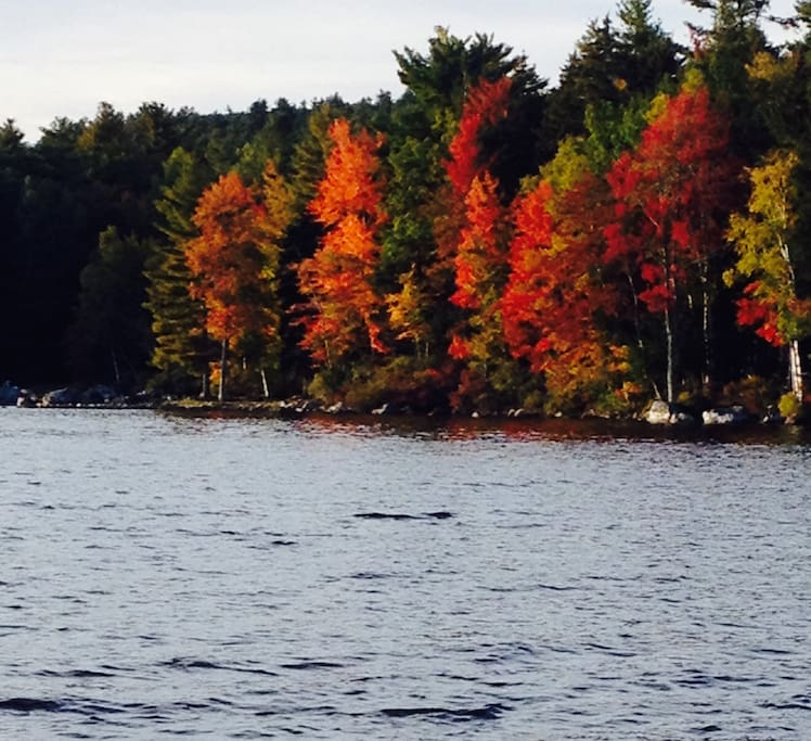 A view from the dock of the lake mid October.