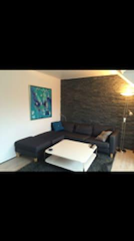 Nyistandsat lejlighed i hjertet af Silkeborg - Silkeborg - Apartment