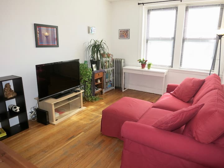 Spacious apartment only minutes to Harvard Square