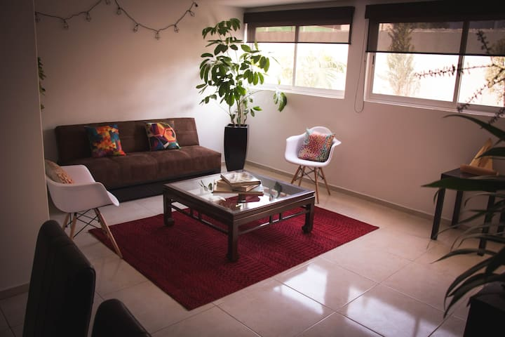 Hermoso Departamento en Roma/ Apartment in Roma