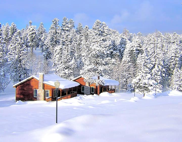 Cozy Cabin in the Woods, 4 WD in Winter