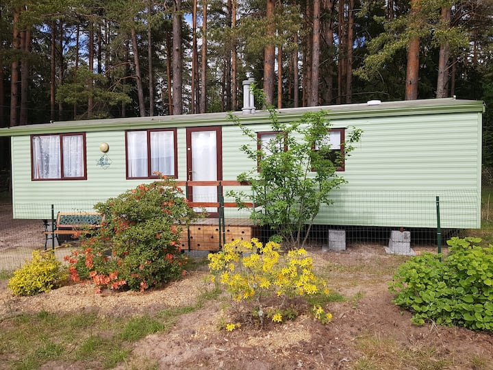 Holiday home near the pine forest