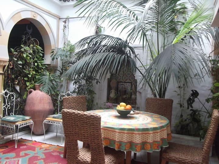 Vacances à Sidi Bousaid