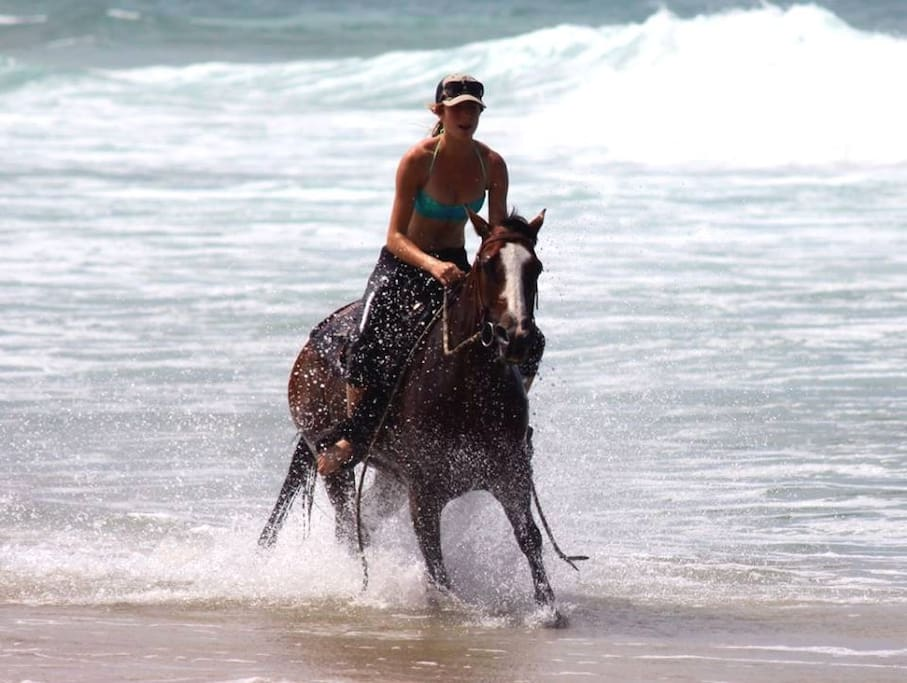 Galloping through the surf on your horse - the stuff Bucket List dreams are made of - Sea Horse Diamond Beach