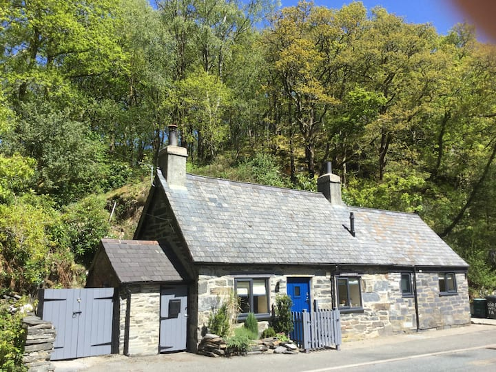 Capel Curig home by the river