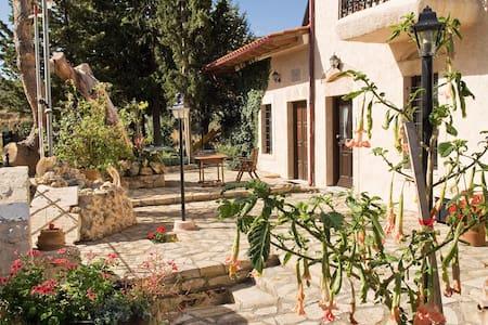 Villa Daskalogianni - 伊拉克里翁 - 別墅