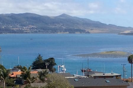 """Spectacular"" Bay View amongst a beautiful garden. - Morro Bay"