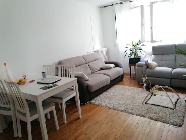 Saint-Denis : appartement agréable à vivre