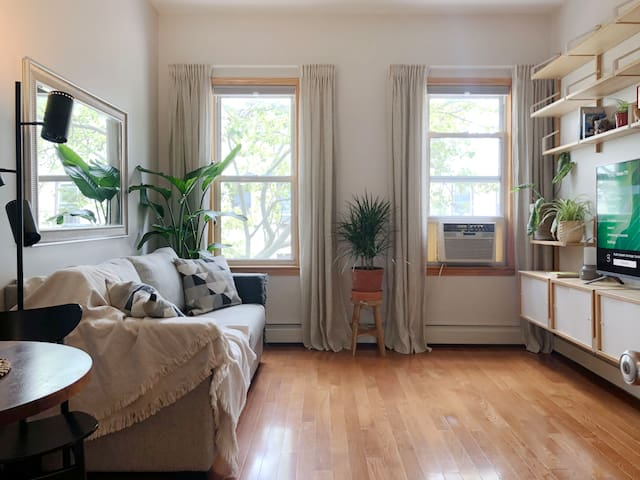 Sun-drenched 2BR Designer's Home in Williamsburg