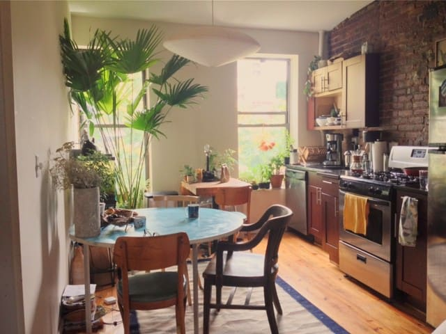 Airy, Open South Williamsburg Apartment