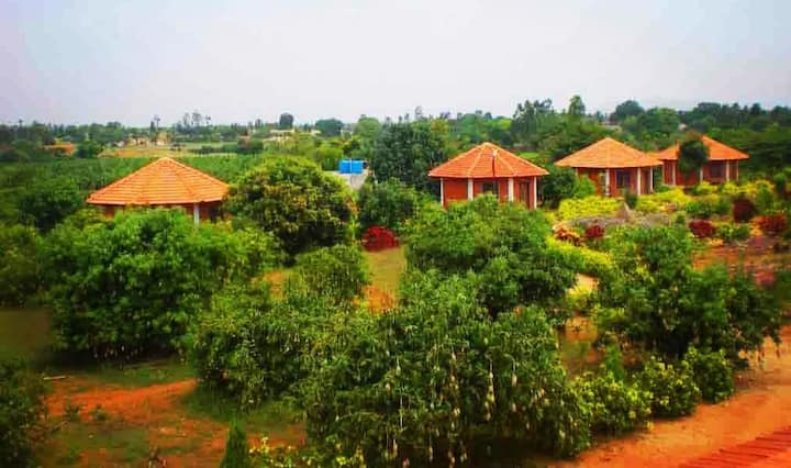Arun Farmstays