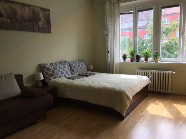Cozy Vyšehrad apartment