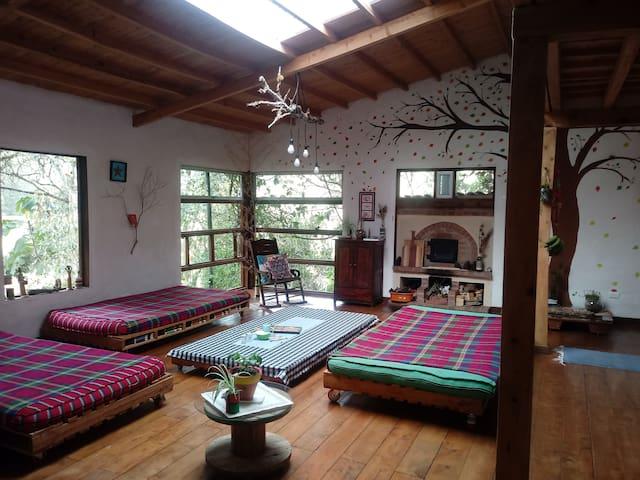 Casa Eco-Lógica