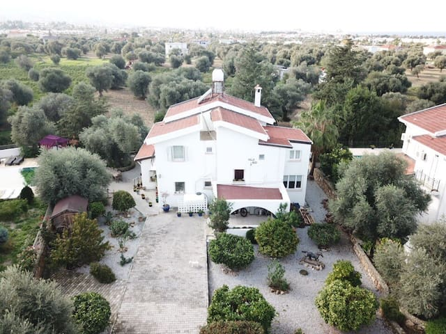 Villa Boss Bed & Breakfast; Ozankoy