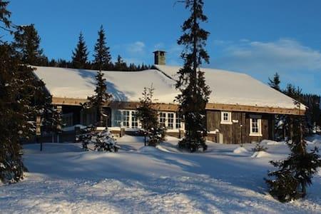 Large nice Cabin at Sjusjøen - Ringsaker - Zomerhuis/Cottage